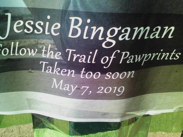 JB - May 7, 2019